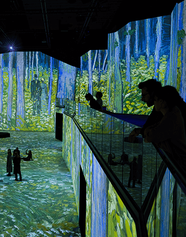 Van Gogh, Into the Woods at THE LUME Melbourne