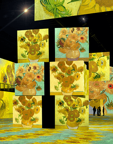 Van Gogh's Sunflowers at THE LUME Melbourne